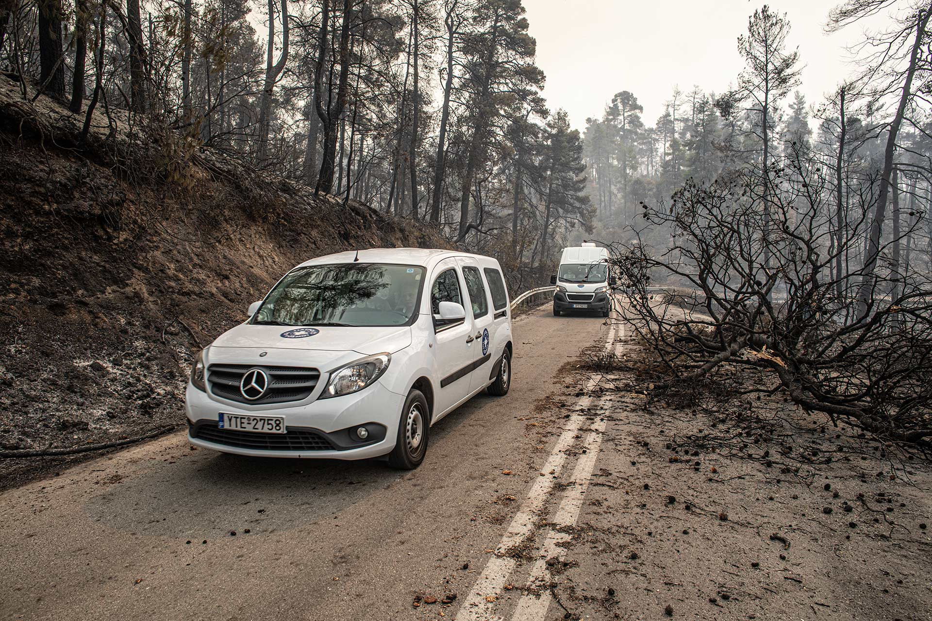 ©MdM Greece - Wild Fires - Evoia